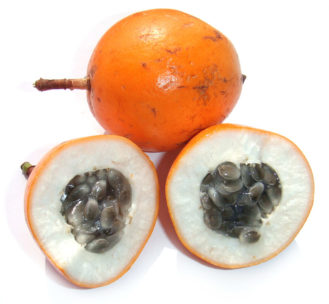 Passiflora_passion_fruit_cross_section_with_white_background