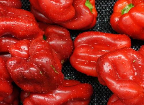 Red_pepper_-_DSC06061
